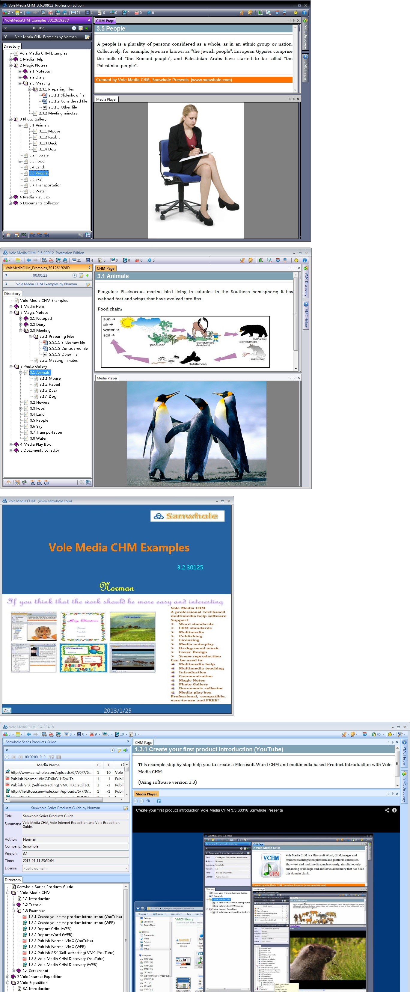 Vole Media CHM Profession Edition