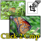 Click 2 Crop (PC) Discount Download Coupon Code