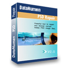 DataNumen PSD Repair (PC) Discount Download Coupon Code