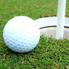 Golfcard (PC) Discount