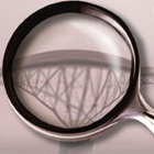 Magnifying Glass Pro (PC) Discount Download Coupon Code
