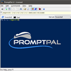Infografik: PromptPal for PC