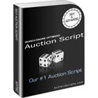 SEO Auction ScriptDiscount