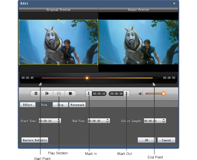 4Videosoft Blu-ray Ripper, Video Software Screenshot