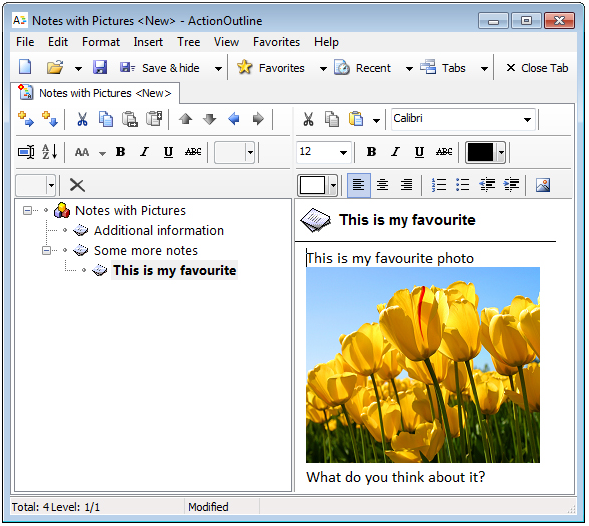 ActionOutline Screenshot