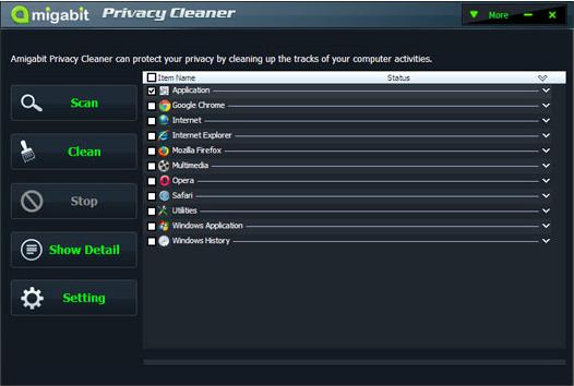 Amigabit Privacy Cleaner Screenshot