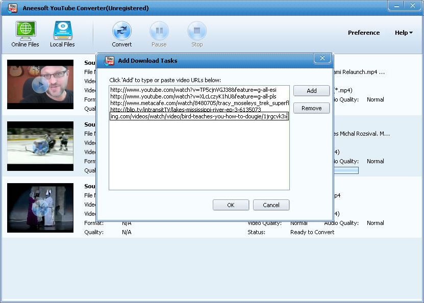 Aneesoft YouTube Converter Screenshot