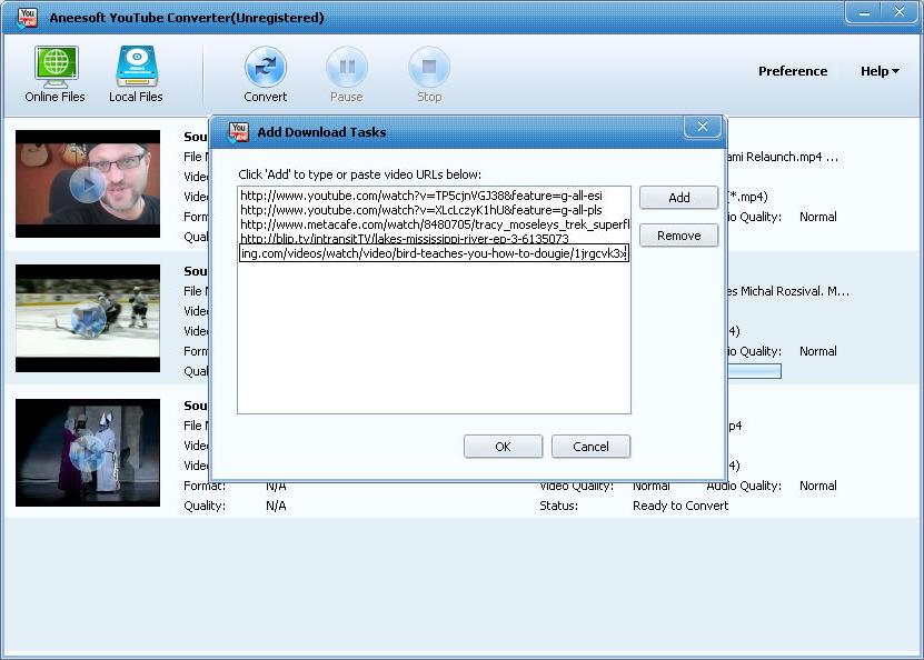 Aneesoft YouTube Converter Screenshot