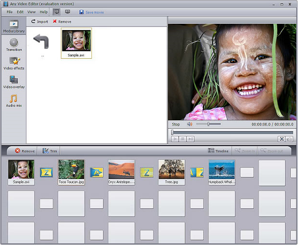 AVCLabs Any Video Editor Screenshot