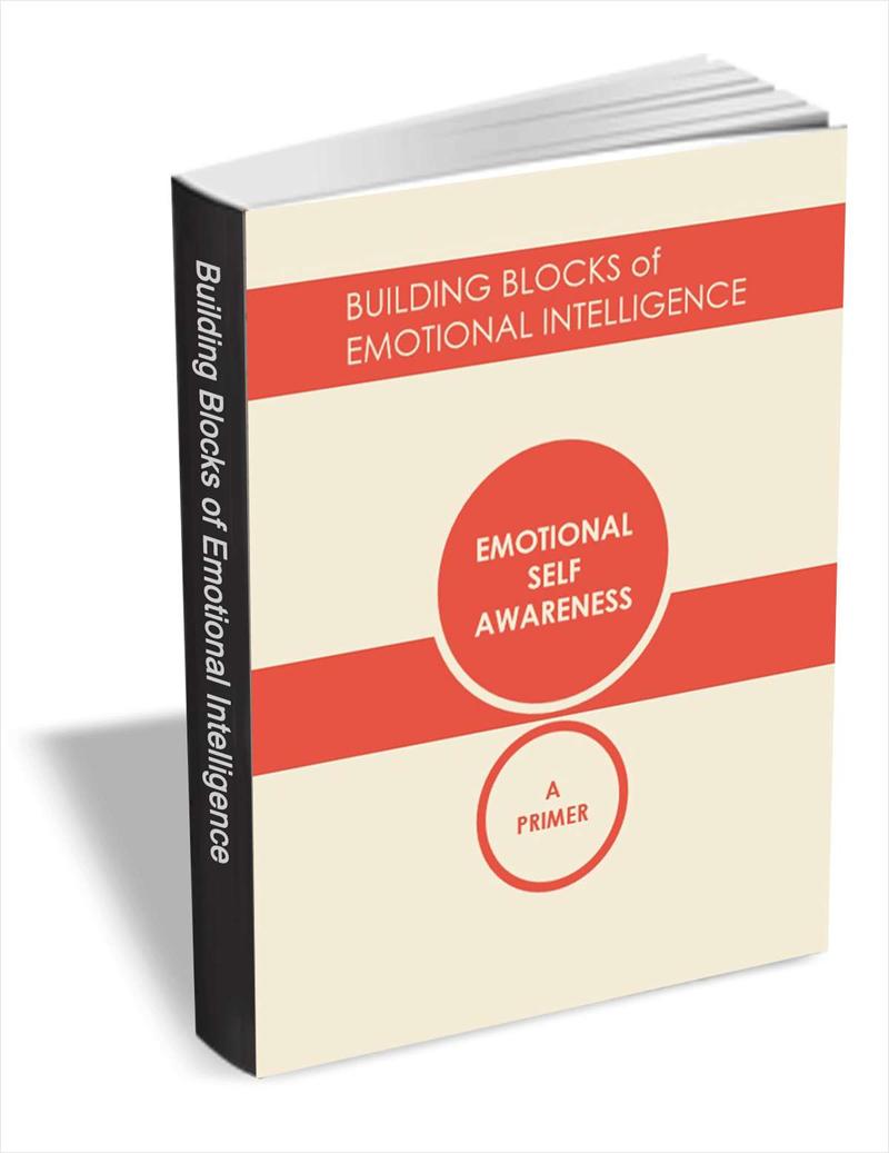 Building Blocks of Emotional Intelligence - Emotional Self Awareness Screenshot