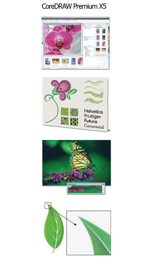Corel Discounts Screenshot
