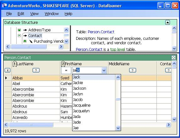 DataRoamer, Database Software Screenshot