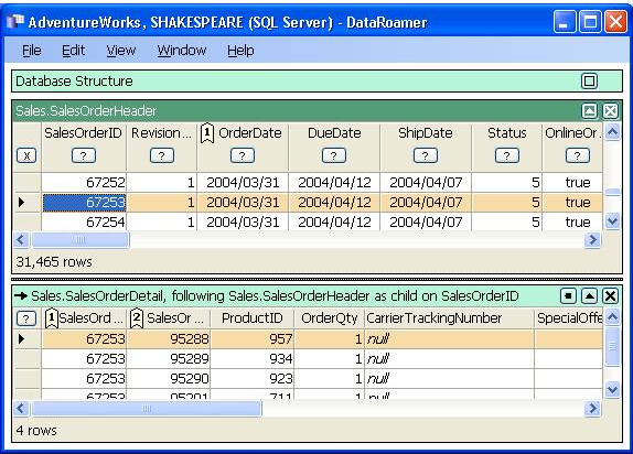 DataRoamer, Development Software Screenshot