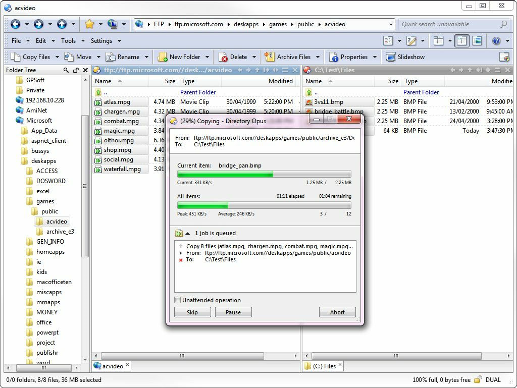 Directory Opus 10 Pro, File Management Software Screenshot