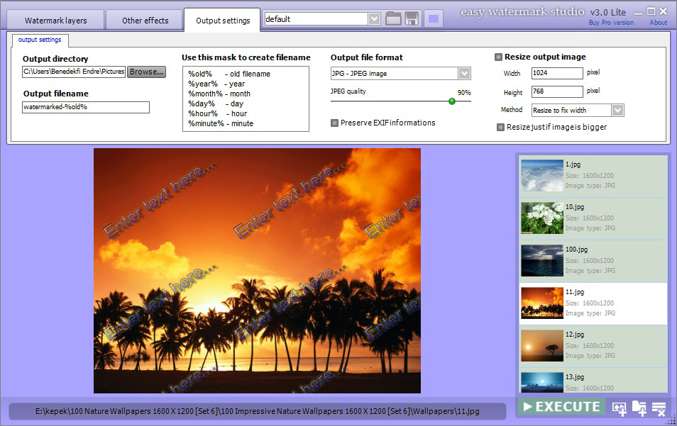 Easy Watermark Studio Pro 3.5, Watermark Software Screenshot