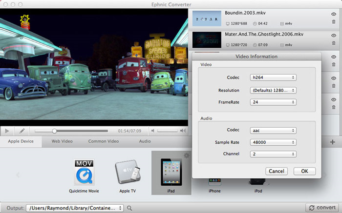 Ephnic Video Converter, Video Software Screenshot