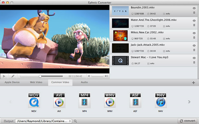 Ephnic Video Converter, Video Converter Software Screenshot