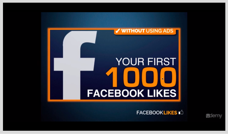 Facebook Marketing: A Step-by Step to your first 1000 Fans! Screenshot