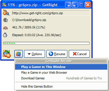 Internet Download Manager Software, GetRight Screenshot