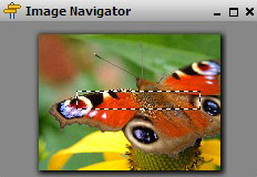 Image Compressor 2008 Pro Edition, Photo Manipulation Software Screenshot