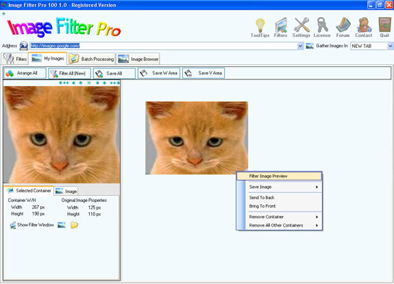 Image Filter Pro 100, Design, Photo & Graphics Software, Misc & Fun Graphics Software Screenshot