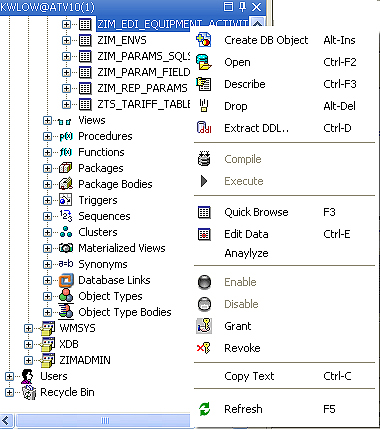 Oracle 11g Client Download