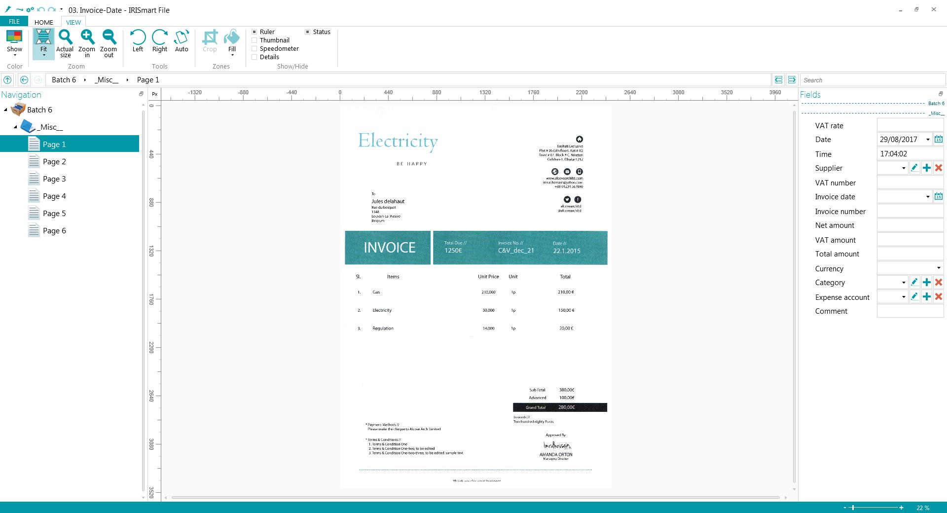 IRISmart Invoice Screenshot