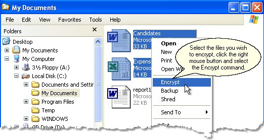 Kryptel Standard Screenshot