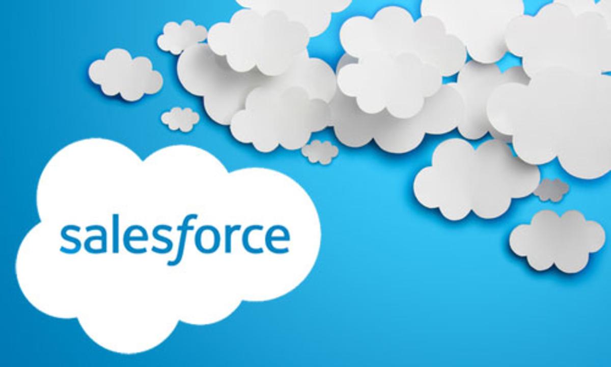 Salesforce: Complete Salesforce Administration Course Development Tools
