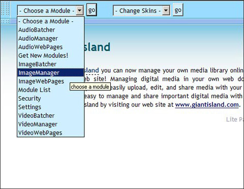 MediaIsland Professional 2.0 Screenshot