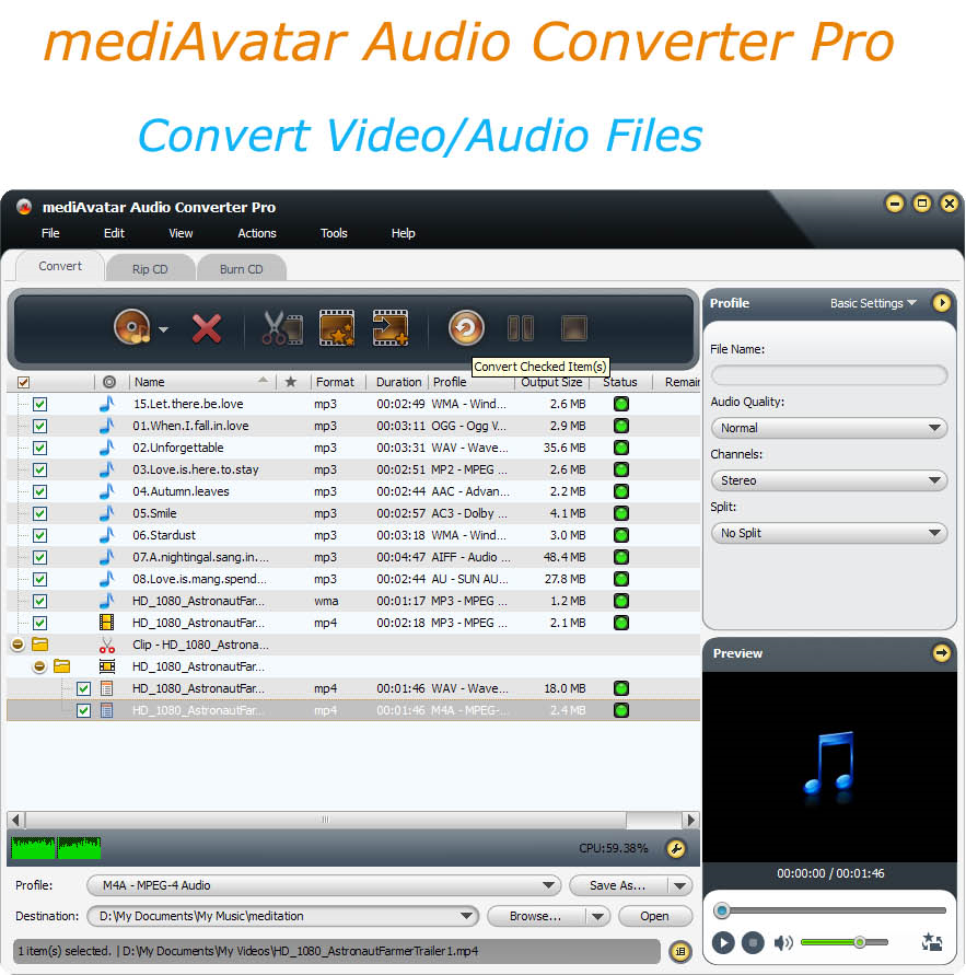mediAvatar Audio Converter Pro Screenshot