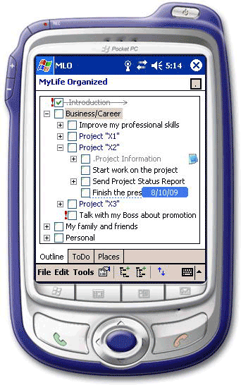 MyLifeOrganized Professional Screenshot