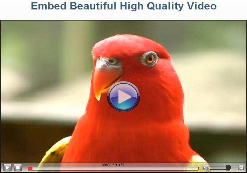 Video Player Software Screenshot