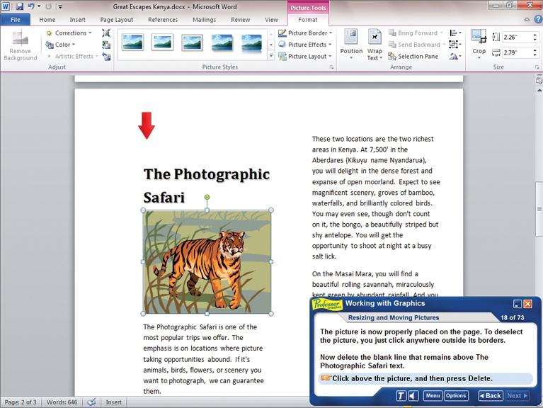 Professor Teaches Office 2010 Tutorial Set Downloads Screenshot