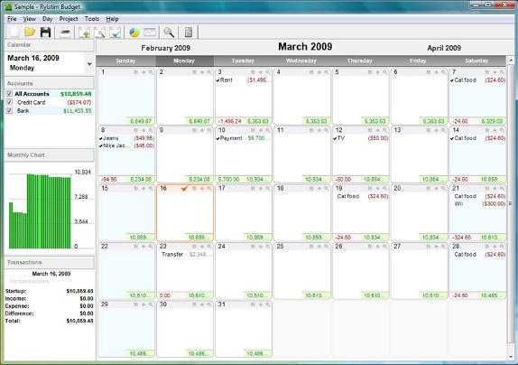 Rylstim Budget Screenshot