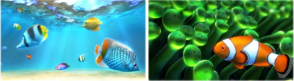 Sim Aquarium PLATINUM, Desktop Customization Software Screenshot