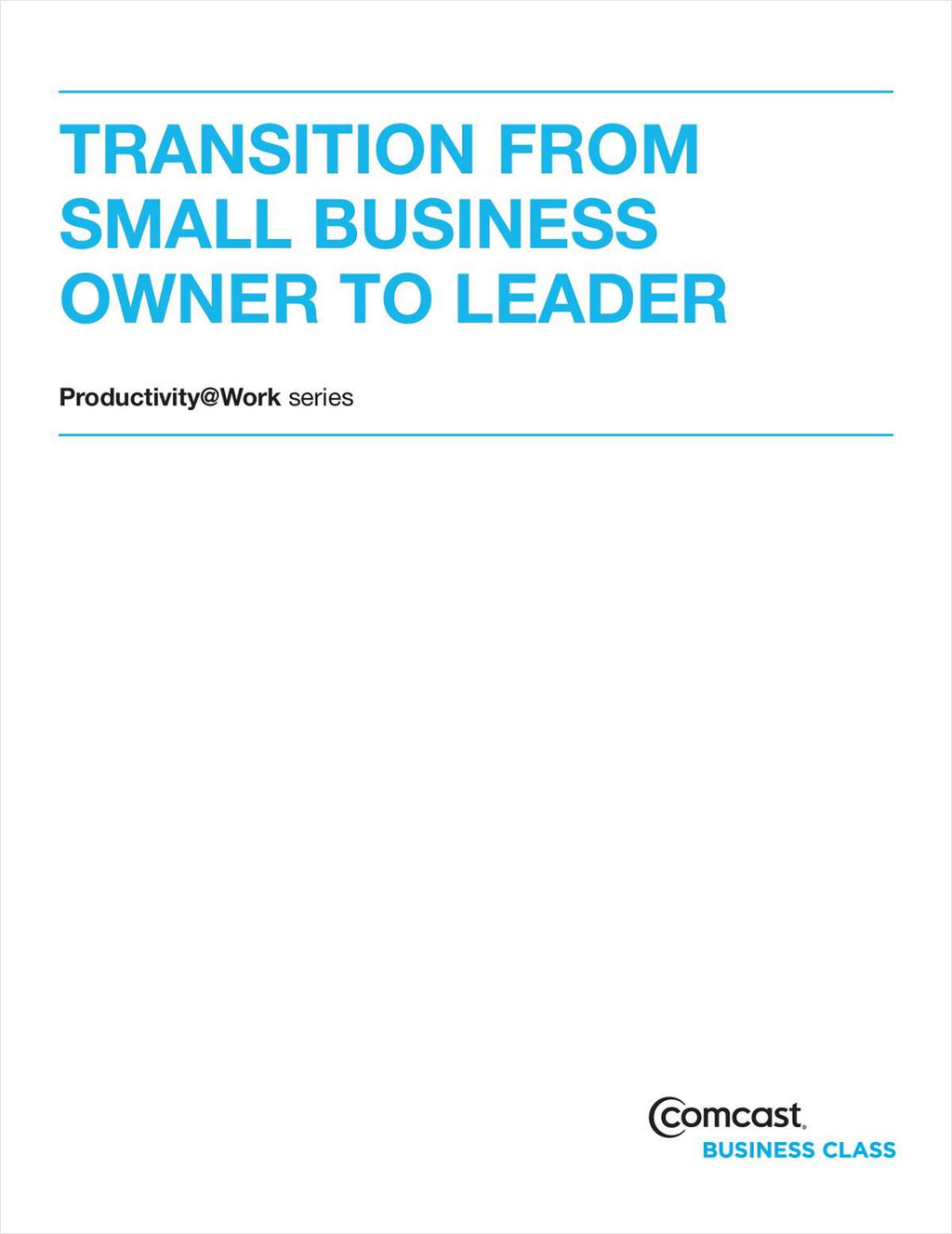 Transition From Small Business Owner To Leader (White Paper) Screenshot