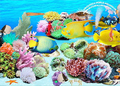 Undersea World Aquarium Screenshot