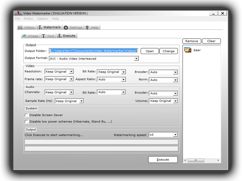 Video Watermarker, Video Converter Software Screenshot