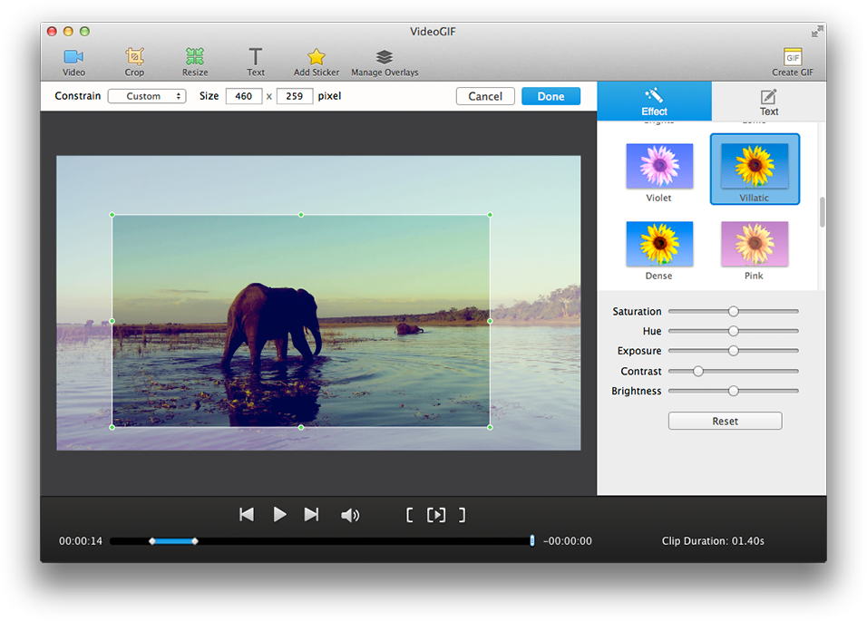 VideoGIF, Video Converter Software Screenshot