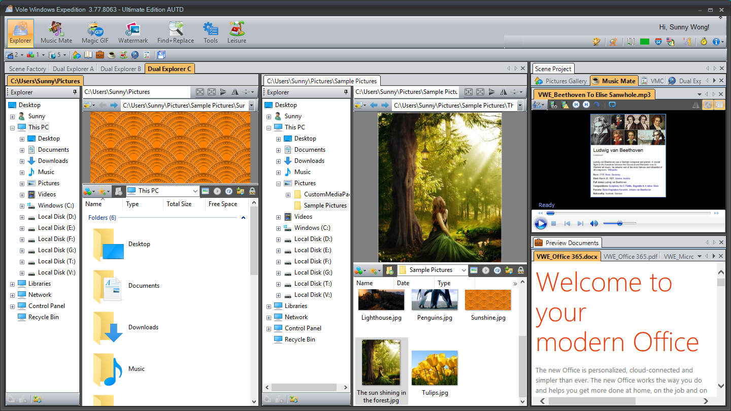 Vole Windows Expedition Ultimate Edition Screenshot